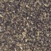 polerad mörkgrå granit